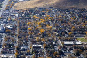 Beautiful Trees Aerial Carson City, NV