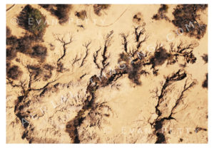 Growing Earth Cracks