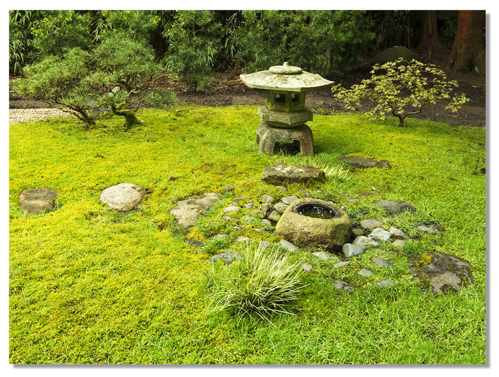 Japanese Tea Garden Photography