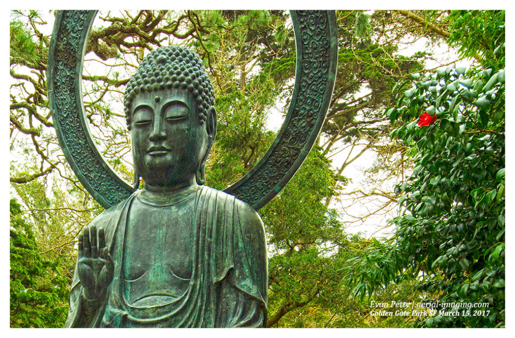 Buddha Japanese Tea Garden Photography