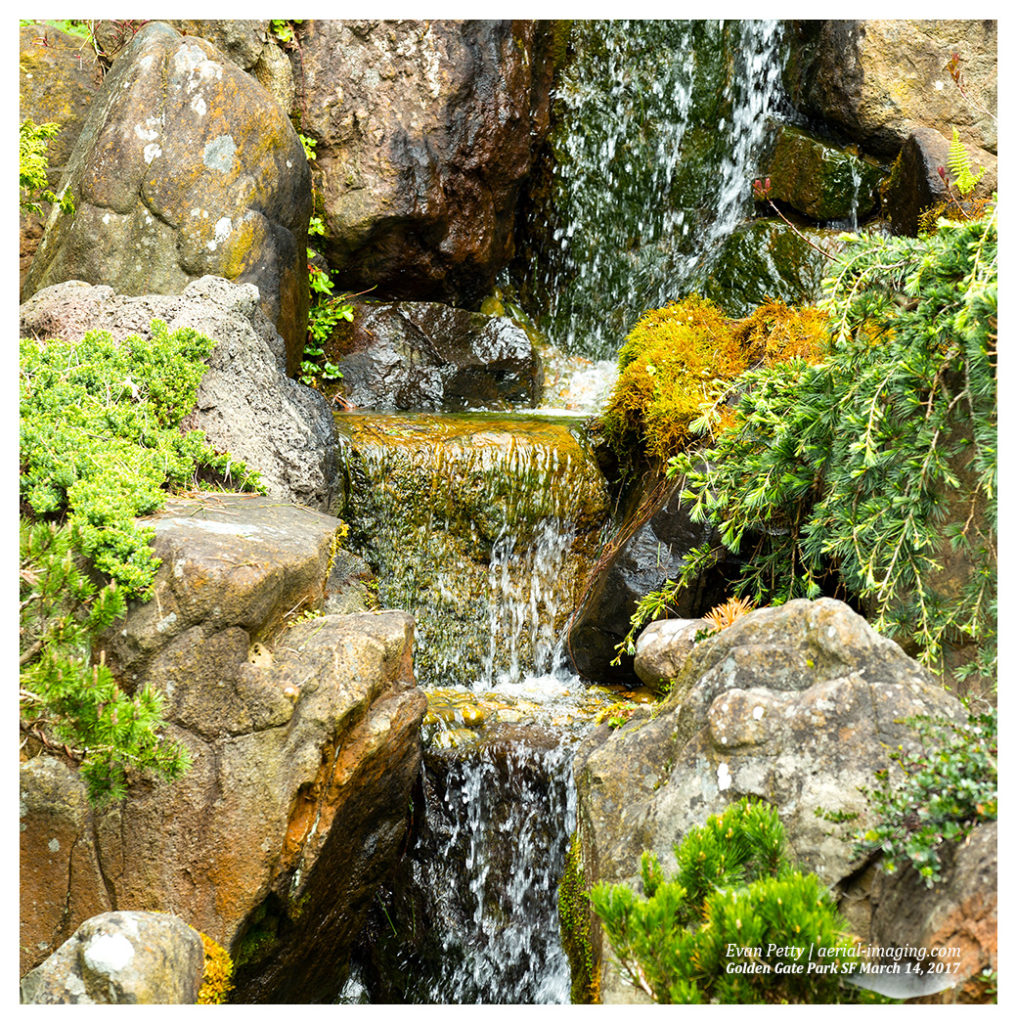 Rock and Water | Japanese Tea Garden Photography