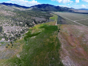 Aerial Views of the Ranch Property