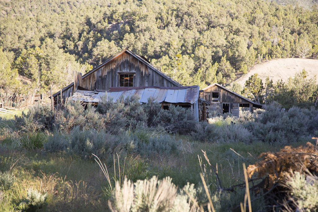 Historical Photographer Ranch Rural Areas