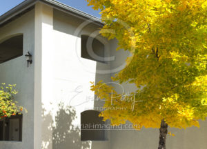 Professional Photography for Apartments in Reno, NV