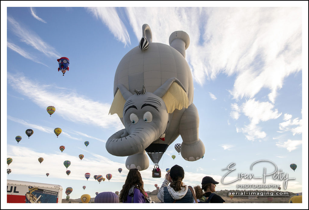 Elephant Nevada Balloon Reno Balloon Race 2018